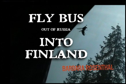 Fly Bus Into Finland